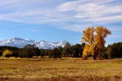 Βουνό του Κολοράντο το φθινόπωρο Στοκ εικόνα με δικαίωμα ελεύθερης χρήσης