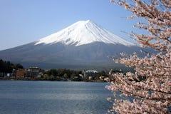 Βουνό του Φούτζι κατά τη διάρκεια της άνοιξη Στοκ Φωτογραφία