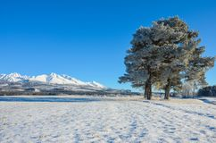 Βουνό του χιονιού στοκ εικόνες