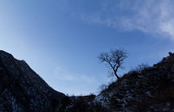 Βουνό το χειμώνα Στοκ εικόνα με δικαίωμα ελεύθερης χρήσης