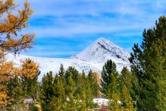 βουνό φθινοπώρου στοκ εικόνες