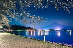 Βουνό Φούτζι και εποχή sakura ανθών κερασιών την άνοιξη Στοκ εικόνα με δικαίωμα ελεύθερης χρήσης