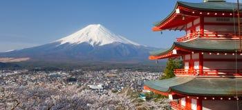 Βουνό Φούτζι και κόκκινη παγόδα στο sakura ανθών κερασιών Στοκ Εικόνα