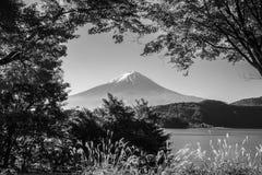 Βουνό Φούτζι με την ελαφριά και κόκκινη σήραγγα φύλλων σφενδάμνων πρωινού Στοκ εικόνα με δικαίωμα ελεύθερης χρήσης