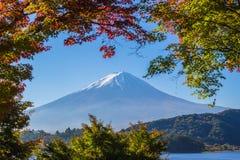 Βουνό Φούτζι με την ελαφριά και κόκκινη σήραγγα φύλλων σφενδάμνων πρωινού Στοκ Εικόνες