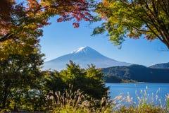 Βουνό Φούτζι με την ελαφριά και κόκκινη σήραγγα φύλλων σφενδάμνων πρωινού Στοκ φωτογραφία με δικαίωμα ελεύθερης χρήσης