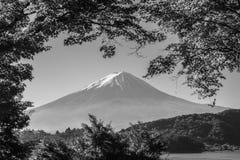 Βουνό Φούτζι με την ελαφριά και κόκκινη σήραγγα φύλλων σφενδάμνων πρωινού Στοκ Φωτογραφία