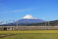 Βουνό Φούτζι στην Ιαπωνία Στοκ Φωτογραφία