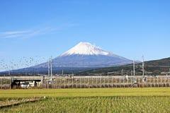 Βουνό Φούτζι στην Ιαπωνία Στοκ εικόνα με δικαίωμα ελεύθερης χρήσης