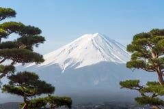 Βουνό Φούτζι Fujisan από τη λίμνη Kawaguchigo με το δέντρο bonzai μέσα Στοκ Εικόνες