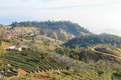 Βουνό, χωριό και αγρόκτημα ANG Khang Doi στοκ φωτογραφία
