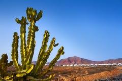 Βουνό Ajaches στο BLANCA Lanzarote Playa Στοκ εικόνα με δικαίωμα ελεύθερης χρήσης
