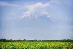 Βουνό Ararat το καλοκαίρι Στοκ φωτογραφία με δικαίωμα ελεύθερης χρήσης