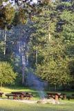 Βουνό campground με τα δέντρα πεύκων Στοκ Φωτογραφία