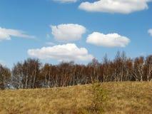 βουνό changbai φθινοπώρου Στοκ φωτογραφία με δικαίωμα ελεύθερης χρήσης