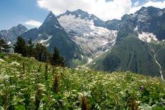 Βουνό Dombai, Καύκασος, Ρωσία στοκ φωτογραφία