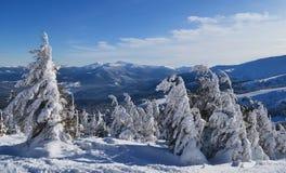 Βουνό Dragobrat Στοκ Εικόνες