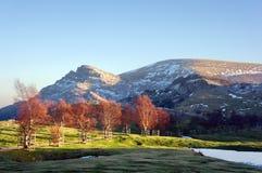 Βουνό Gorbea στη βασκική χώρα Στοκ φωτογραφία με δικαίωμα ελεύθερης χρήσης