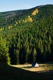 Βουνό ladscape με τα δέντρα Στοκ φωτογραφία με δικαίωμα ελεύθερης χρήσης