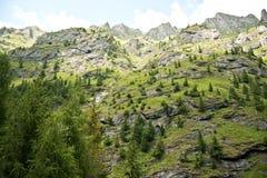 Βουνό Lanscape στα βουνά Fagaras στη Ρουμανία Στοκ Εικόνα