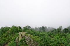 Βουνό Lanscape Fogy στα λουλούδια Clos άσχημου καιρού και Edelweiss Στοκ Φωτογραφίες
