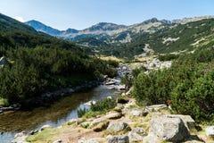 Βουνό Pirin στοκ φωτογραφία με δικαίωμα ελεύθερης χρήσης