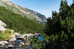 Βουνό Pirin στοκ εικόνες
