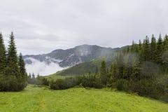 Βουνό Retezat Στοκ Εικόνες