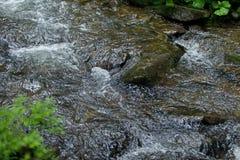 Βουνό river_closeup Στοκ Φωτογραφία