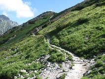 Βουνό rote στοκ εικόνες