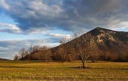 Βουνό 03 Rtanj Στοκ εικόνα με δικαίωμα ελεύθερης χρήσης