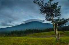 Βουνό Slamet στοκ εικόνα