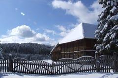 βουνό Tara Στοκ Φωτογραφίες