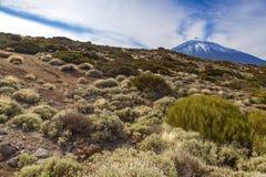 Βουνό teide EL Στοκ Εικόνες