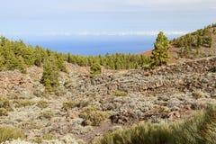 Βουνό teide EL Στοκ Εικόνα