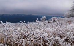 Βουνό Whitetop στοκ φωτογραφία