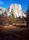 Βουνό Yosemite EL Capitan στοκ φωτογραφίες