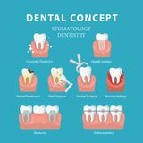 βουρτσίζοντας διάνυσμα δοντιών κατσικιών έννοιας οδοντικό Διανυσματική αφίσα στο επίπεδο ύφος Οδοντιατρική και στοματολογία Στοκ Φωτογραφία
