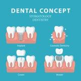 βουρτσίζοντας διάνυσμα δοντιών κατσικιών έννοιας οδοντικό Διανυσματική αφίσα Οδοντιατρική και στοματολογία Στοκ Εικόνα