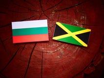 Βουλγαρική σημαία με την τζαμαϊκανή σημαία σε ένα κολόβωμα δέντρων Στοκ Φωτογραφίες