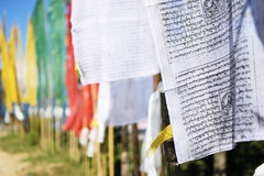 Βουδιστικές σημαίες προσευχής, Sikkim, Ινδία Στοκ Εικόνες