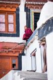 Βουδιστικός μοναχός από το μοναστήρι Diskit. Ινδία Στοκ Εικόνες