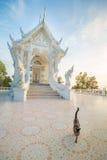 βουδιστικό λευκό ναών Στοκ Φωτογραφία