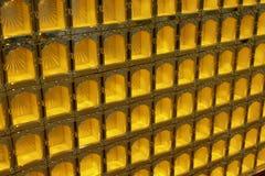 Βουδιστικό κιβώτιο Στοκ φωτογραφία με δικαίωμα ελεύθερης χρήσης