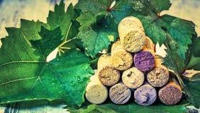 Βουλώνει το κρασί με τα φύλλα σταφυλιών Στοκ εικόνες με δικαίωμα ελεύθερης χρήσης