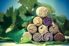 Βουλώνει το κρασί με τα φύλλα σταφυλιών Στοκ Φωτογραφίες