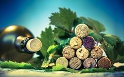 Βουλώνει το κρασί με τα φύλλα σταφυλιών Στοκ φωτογραφία με δικαίωμα ελεύθερης χρήσης