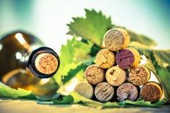 Βουλώνει το κρασί με τα φύλλα σταφυλιών Στοκ εικόνα με δικαίωμα ελεύθερης χρήσης