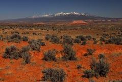 βούρτσα λογικό Utah Στοκ φωτογραφία με δικαίωμα ελεύθερης χρήσης