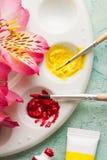 Βούρτσα χρωμάτων, κόκκινο, κίτρινο χρώμα watercolor με τα λουλούδια άνοιξη Στοκ Φωτογραφία